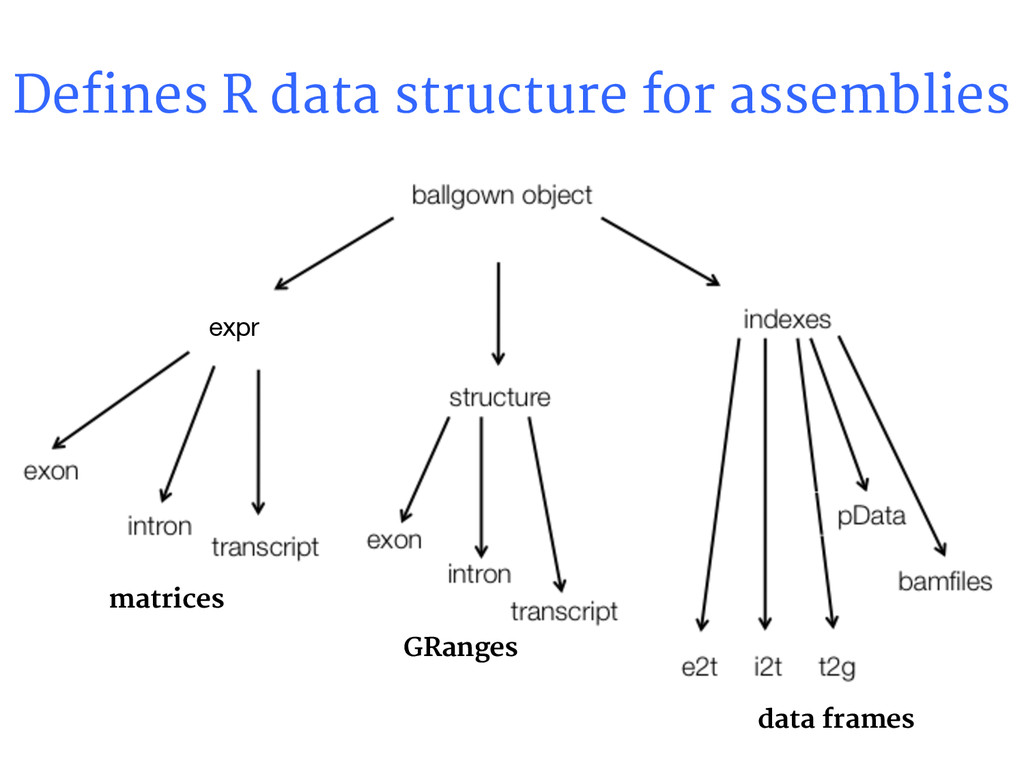 Defines R data structure for assemblies expr ma...