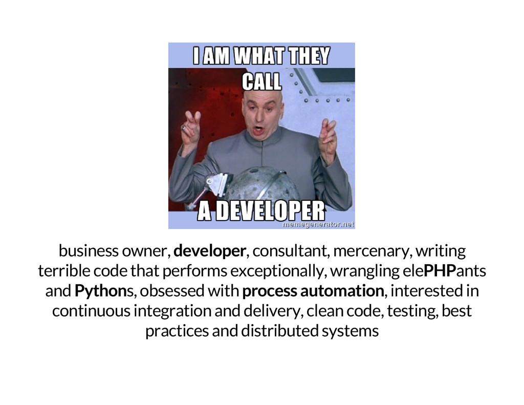 business owner, developer , consultant, mercena...