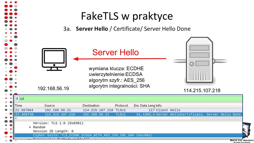 FakeTLS w praktyce 3a. Server Hello / Certifica...