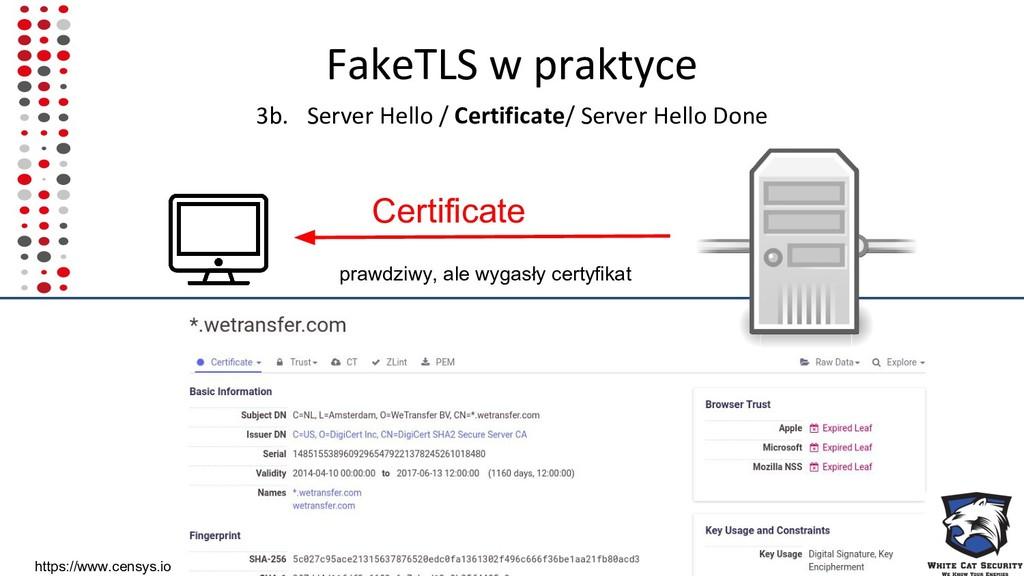 FakeTLS w praktyce 3b. Server Hello / Certifica...