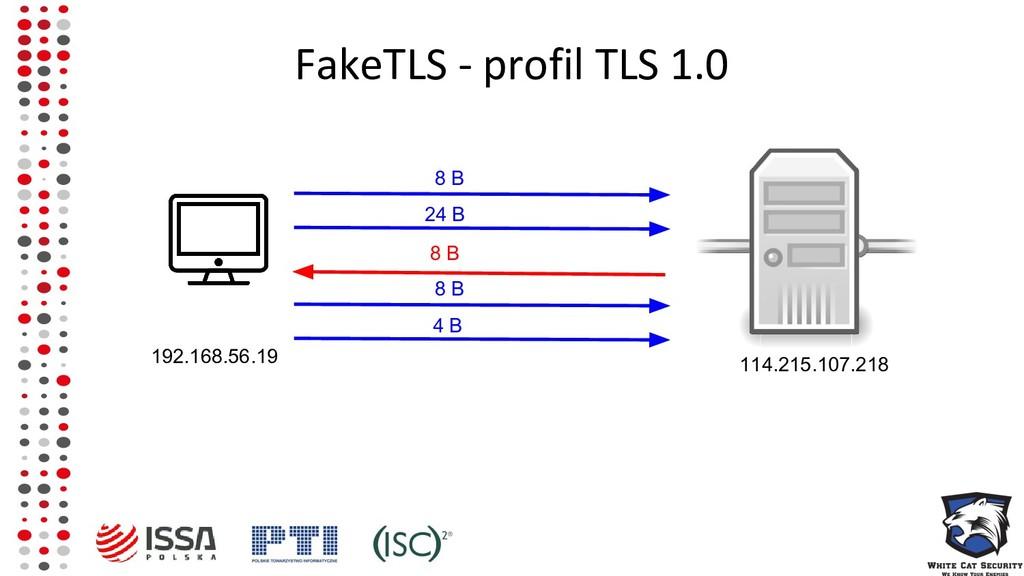 FakeTLS - profil TLS 1.0 8 B 192.168.56.19 114....