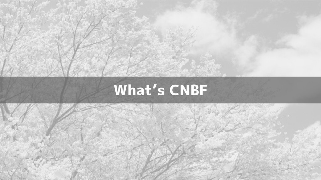 What's CNBF