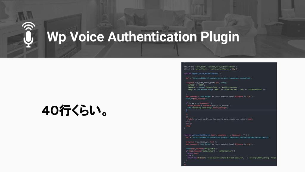 Wp Voice Authentication Plugin 40行くらい。