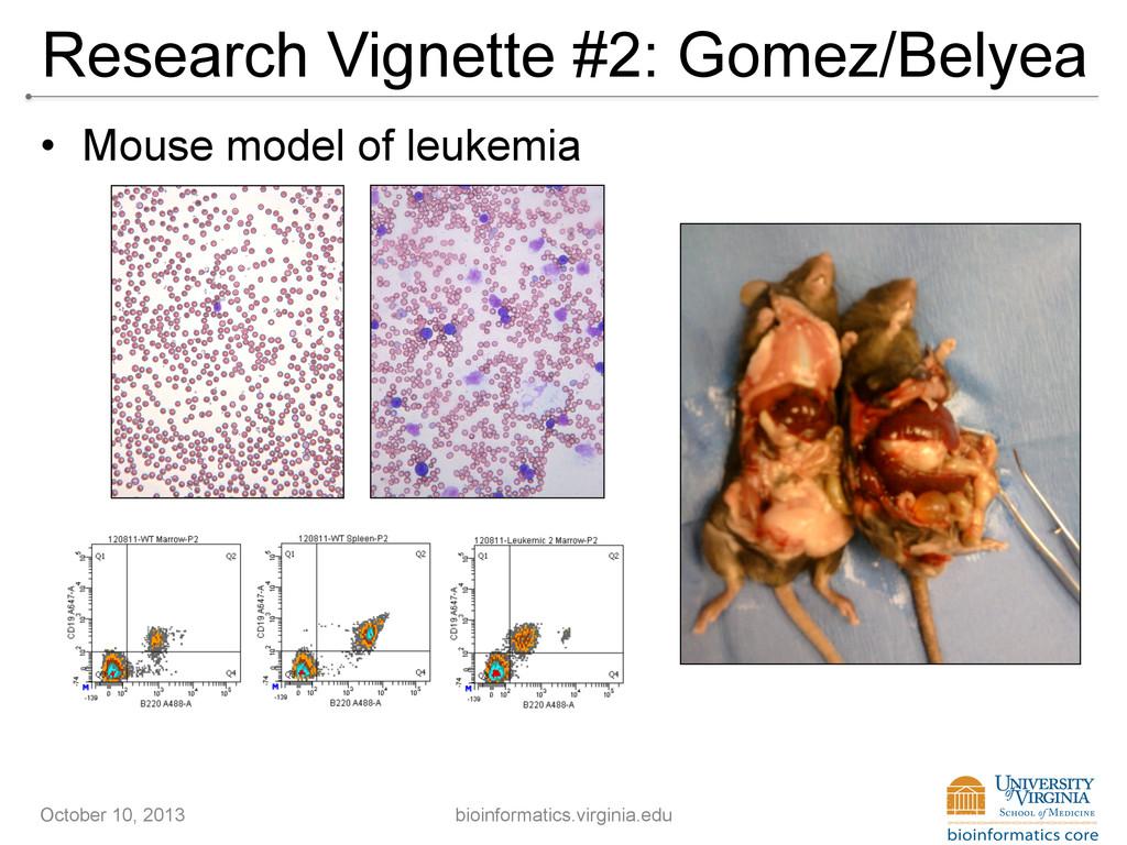 Research Vignette #2: Gomez/Belyea • Mouse mod...