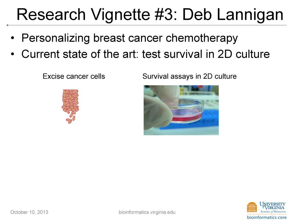 Research Vignette #3: Deb Lannigan • Personali...
