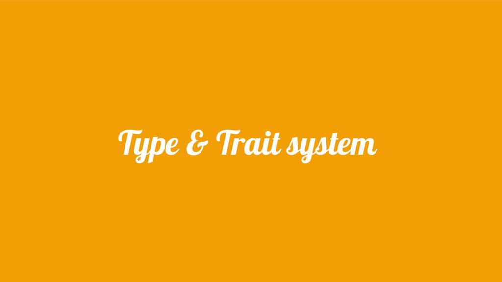 Type & Trait system