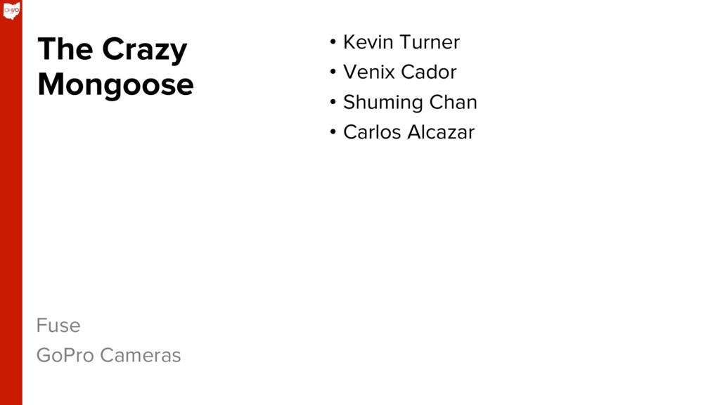 The Crazy Mongoose • Kevin Turner • Venix Cad...