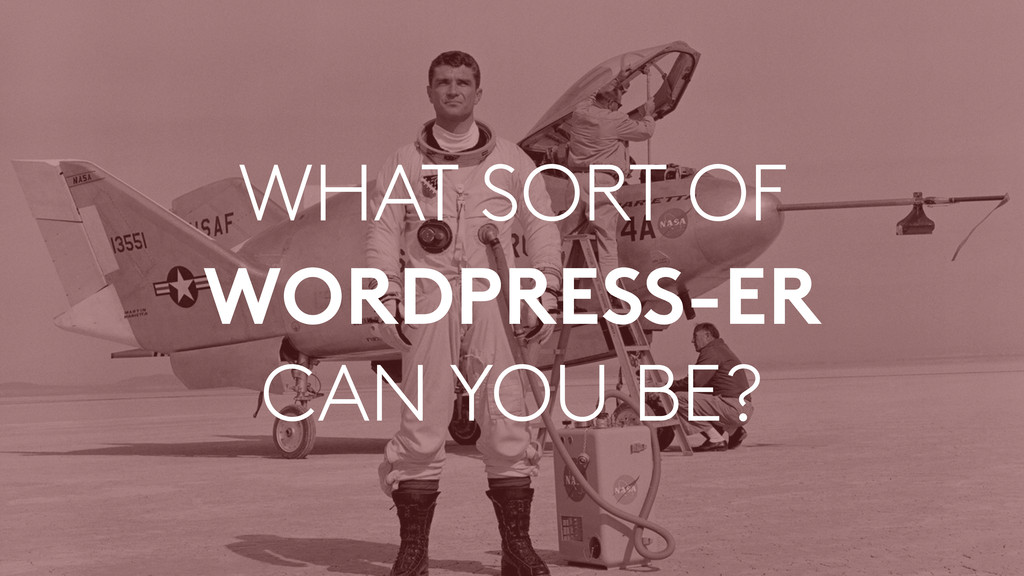 WHAT SORT OF WORDPRESS-ER CAN YOU BE?