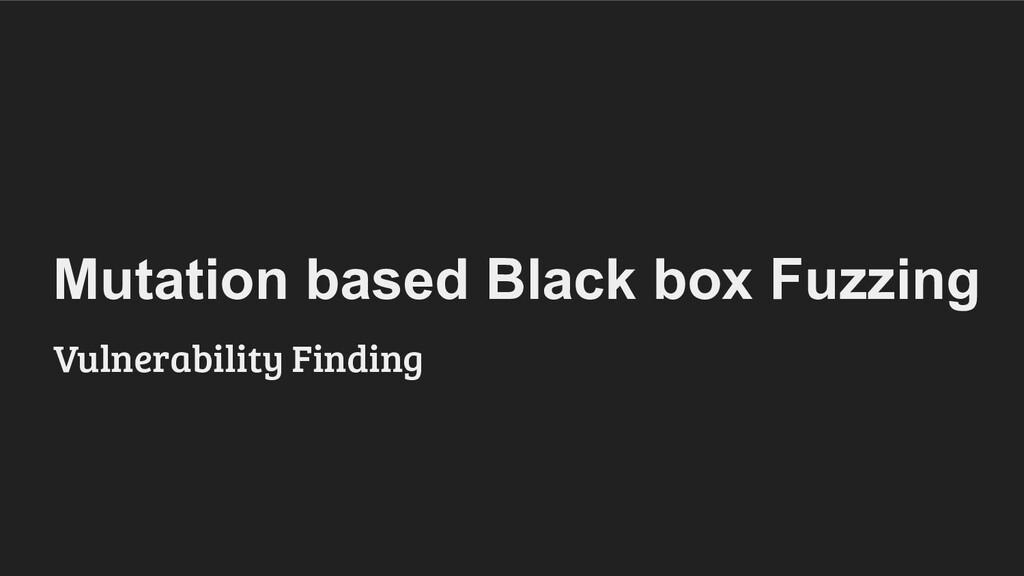 Mutation based Black box Fuzzing Vulnerability ...