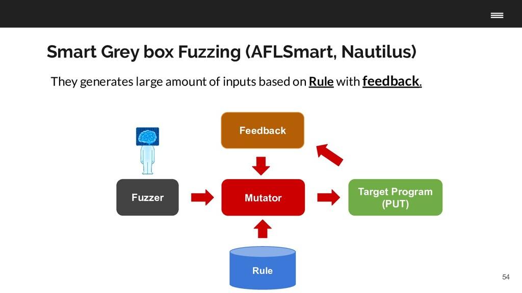 54 Fuzzer Target Program (PUT) Rule Mutator Fee...