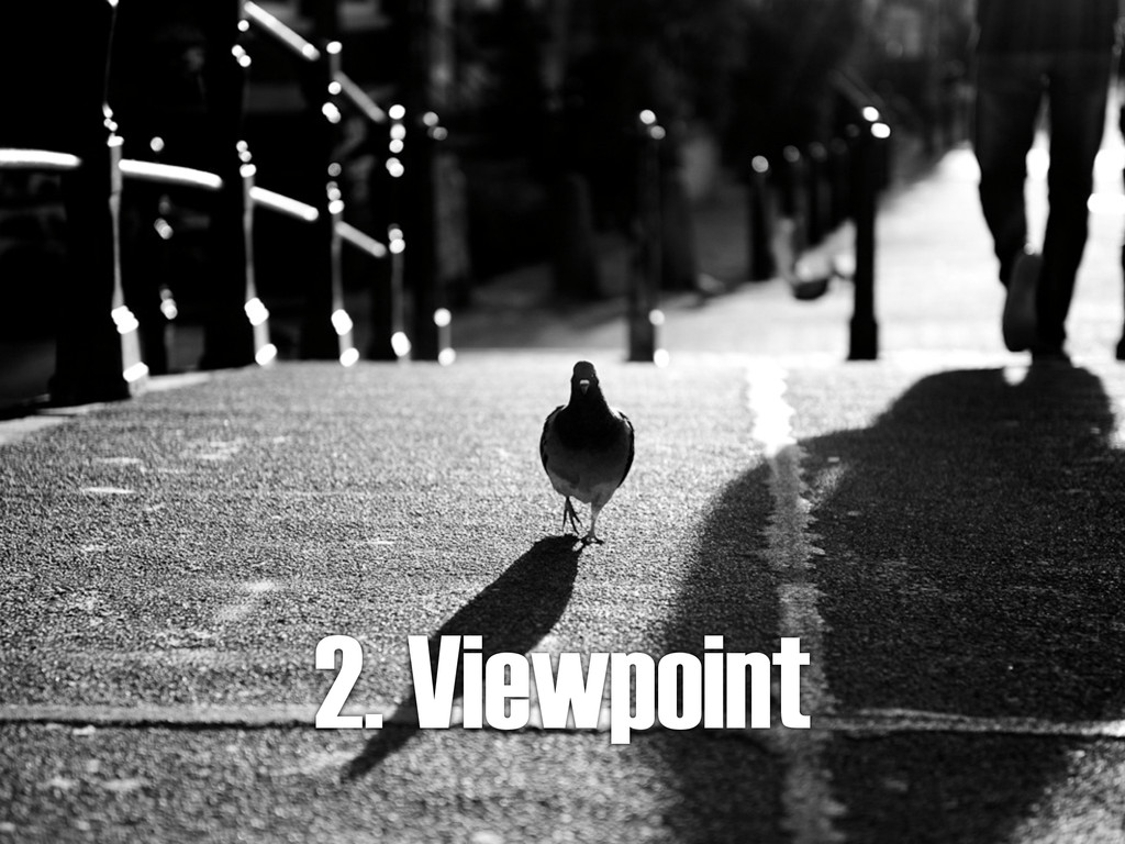 2. Viewpoint