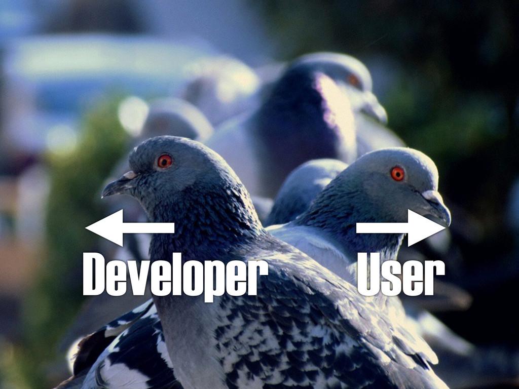 Developer User