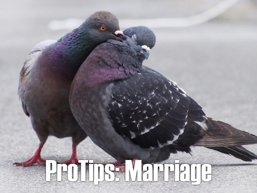 ProTips: Marriage