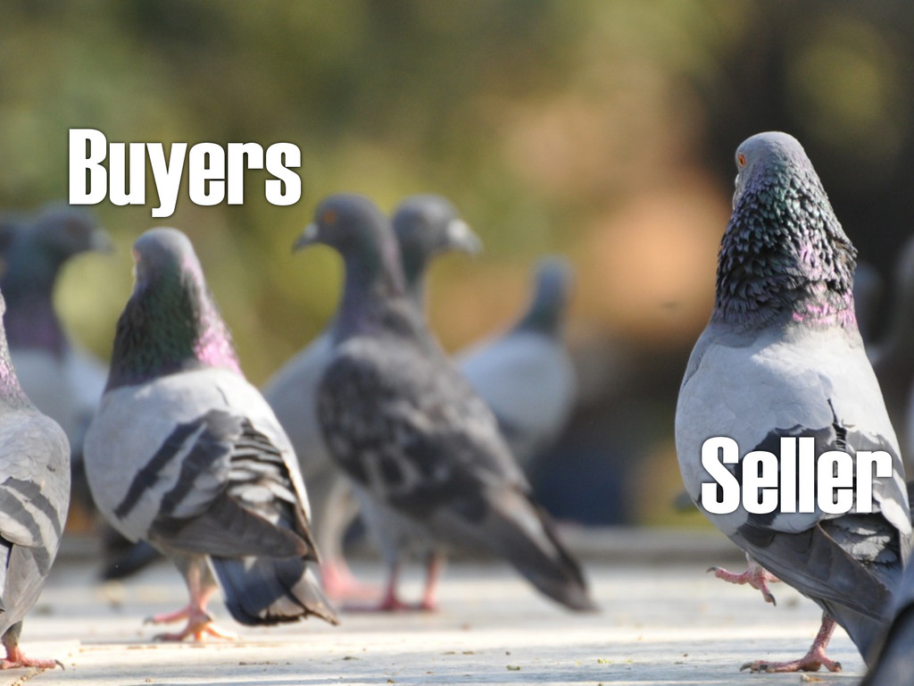 Seller Buyers