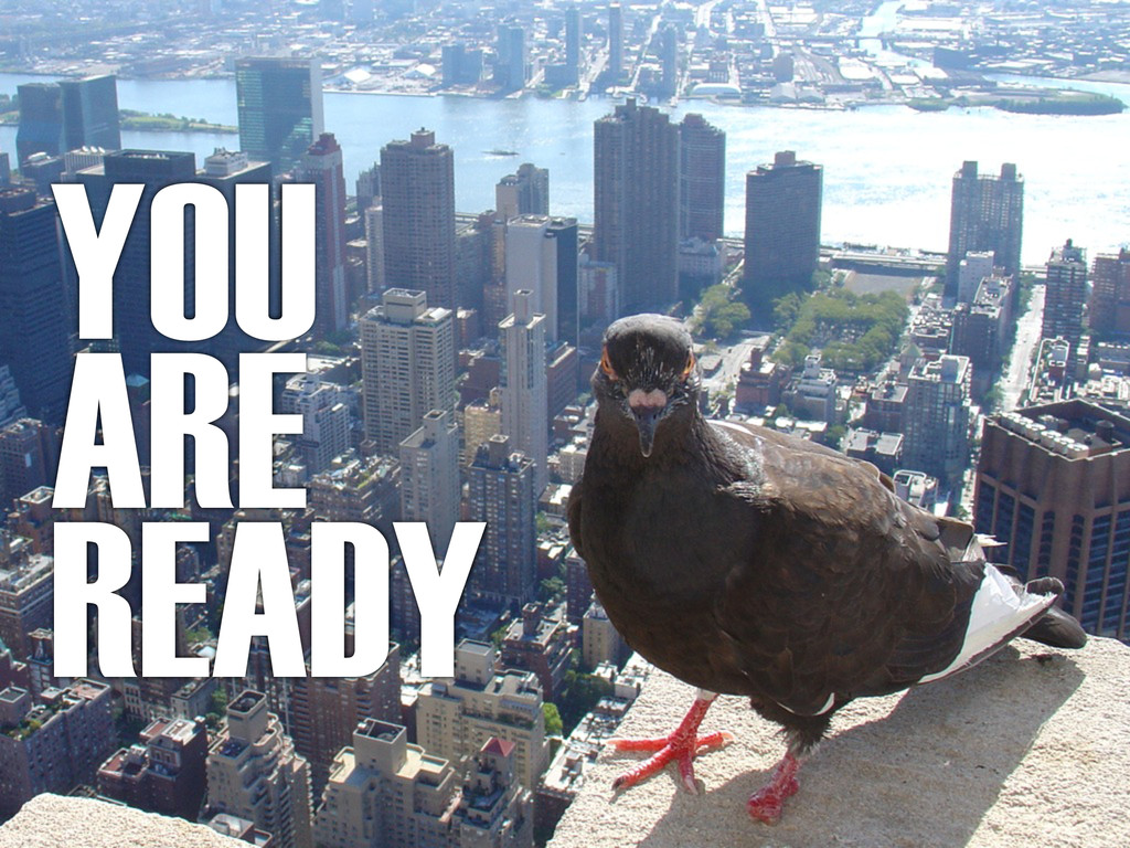 YOU ARE READY