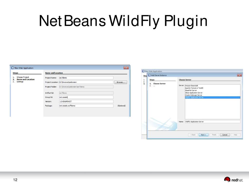 12 NetBeans WildFly Plugin