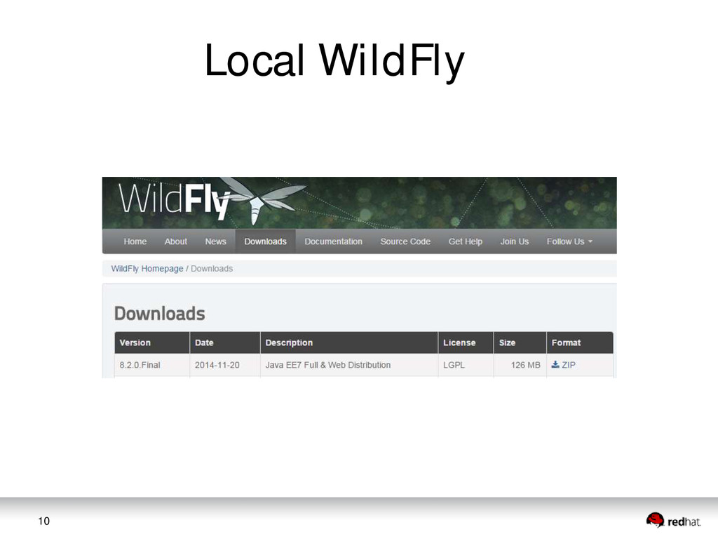 10 Local WildFly