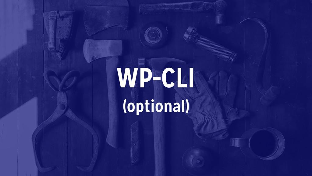WP-CLI (optional)
