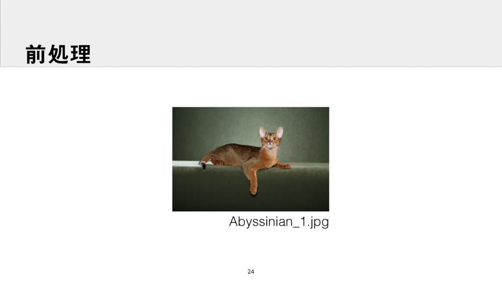 લॲཧ Abyssinian_1.jpg