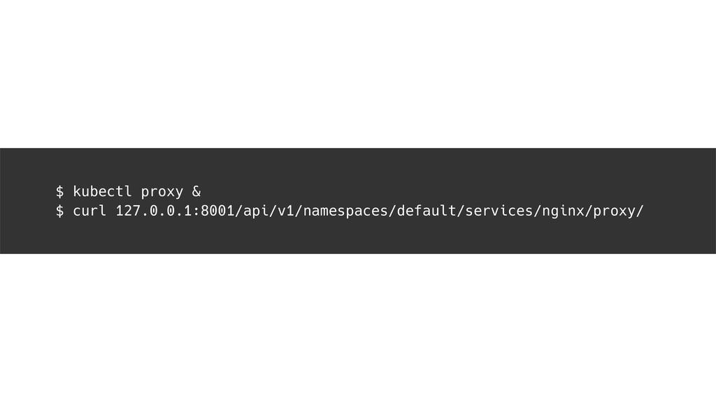 $ kubectl proxy & $ curl 127.0.0.1:8001/api/v1/...