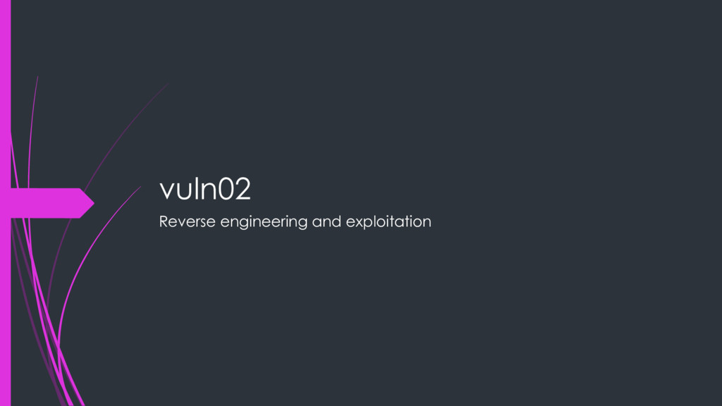 vuln02 Reverse engineering and exploitation