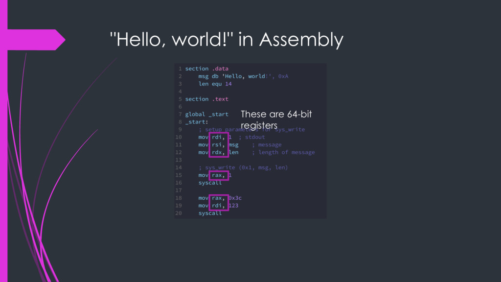 """Hello, world!"" in Assembly These are 64-bit re..."