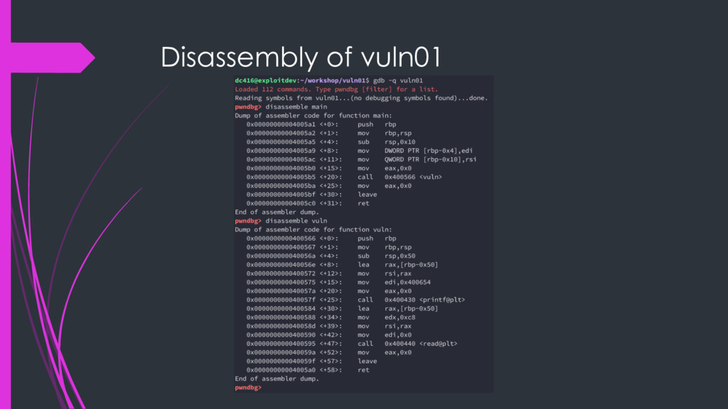 Disassembly of vuln01
