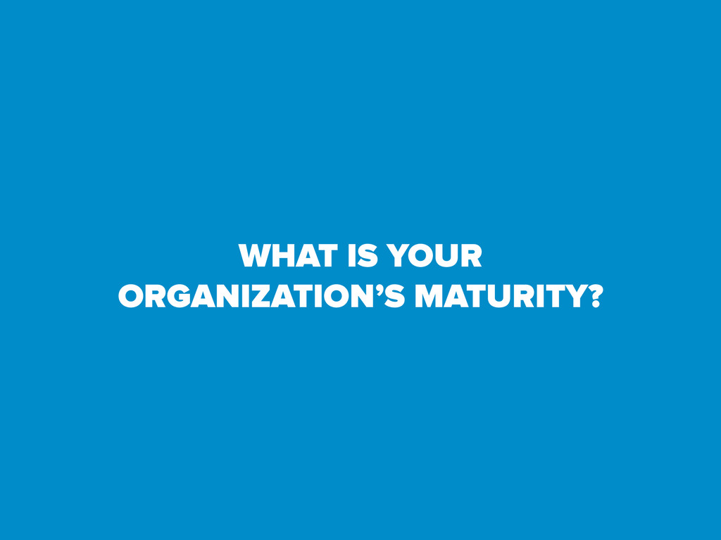 WHAT IS YOUR ORGANIZATION'S MATURITY?