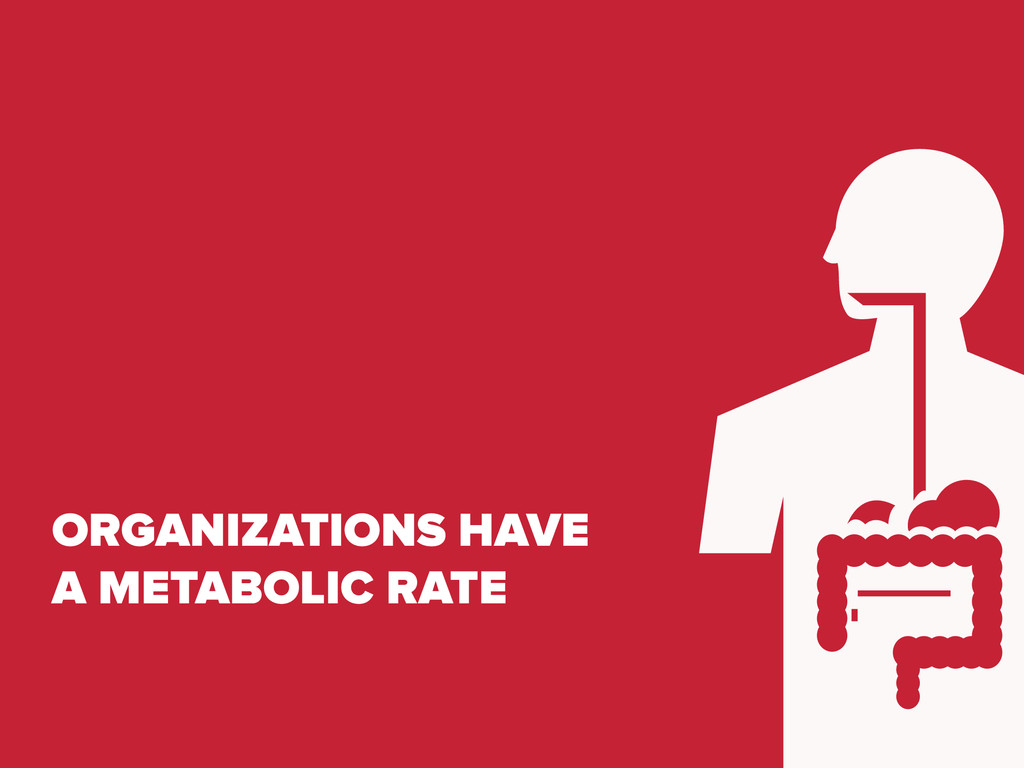 ORGANIZATIONS HAVE A METABOLIC RATE