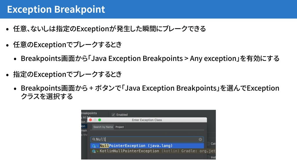 Exception Breakpoint • 任意、ないしは指定のExceptionが発生した...