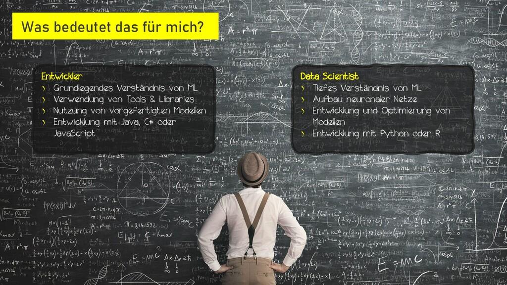 Entwickler › Grundlegendes Verständnis von ML ›...
