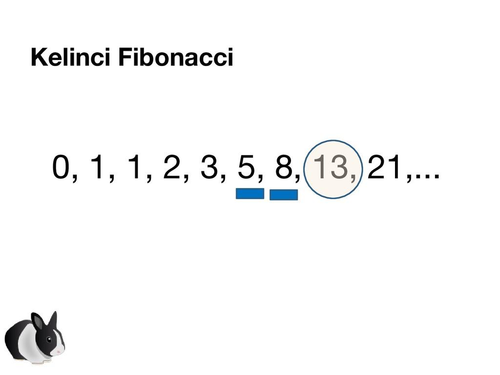 Kelinci Fibonacci 0, 1, 1, 2, 3, 5, 8, 13, 21,....