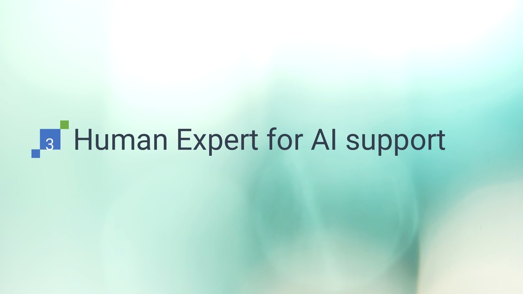 Human Expert for AI support 3