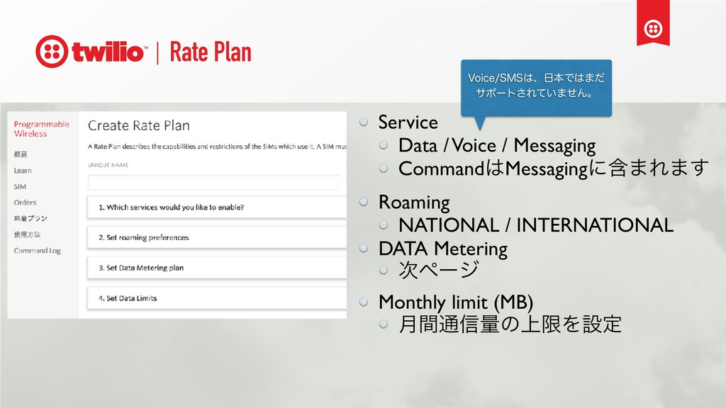Rate Plan Service Data / Voice / Messaging Comm...