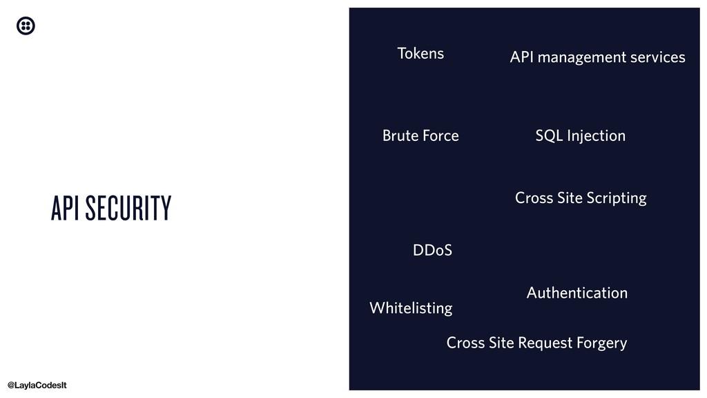 API SECURITY Brute Force Cross Site Scripting D...