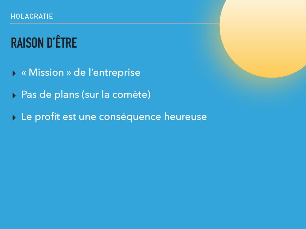 HOLACRATIE RAISON D'ÊTRE ▸ « Mission » de l'ent...