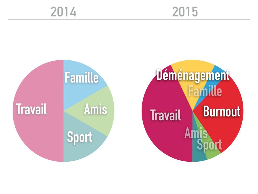 2015 2014 Travail Sport Amis Famille Déménageme...