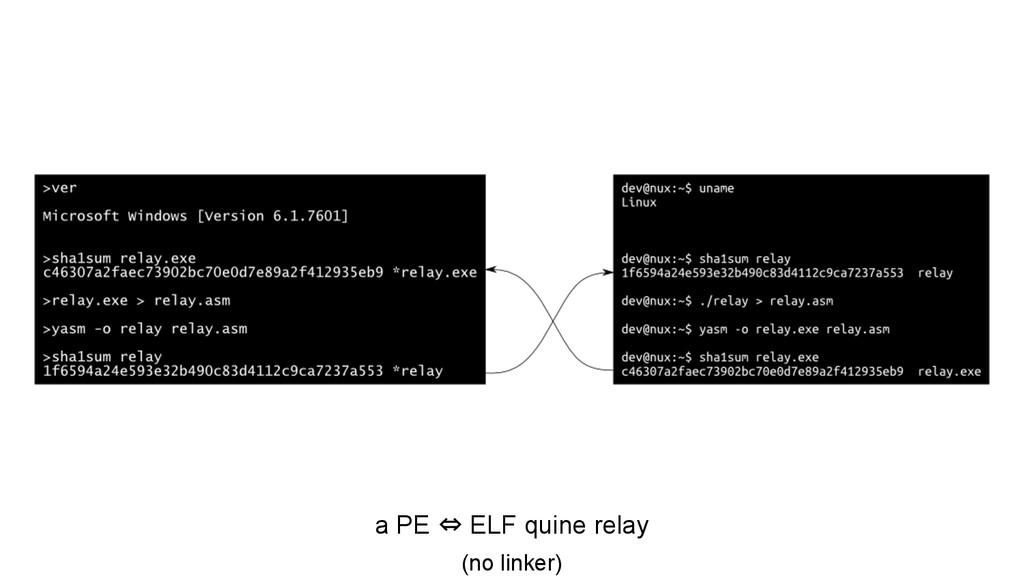 a PE ⇔ ELF quine relay (no linker)