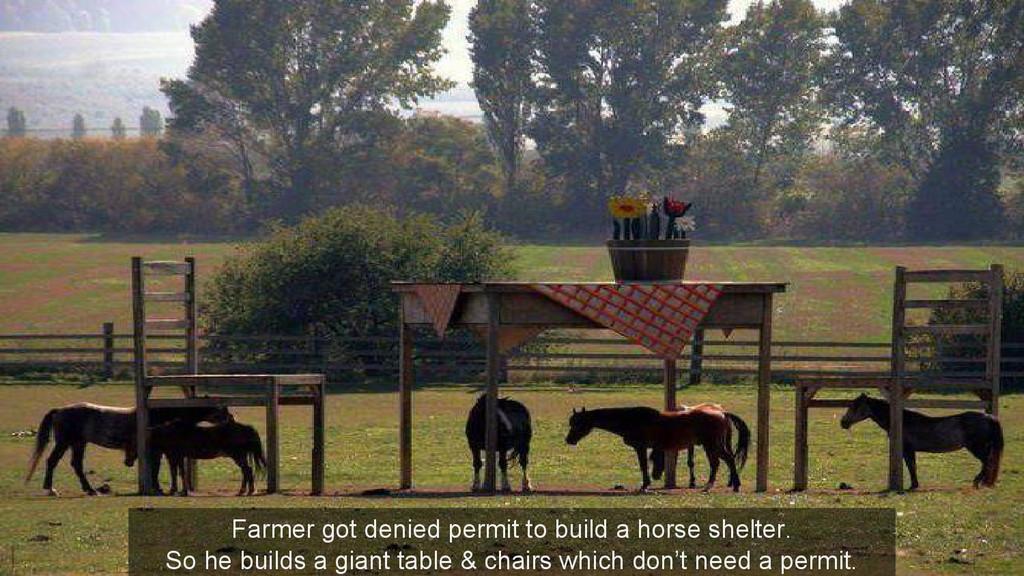 Farmer got denied permit to build a horse shelt...