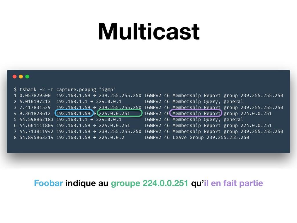Multicast Foobar indique au groupe 224.0.0.251 ...