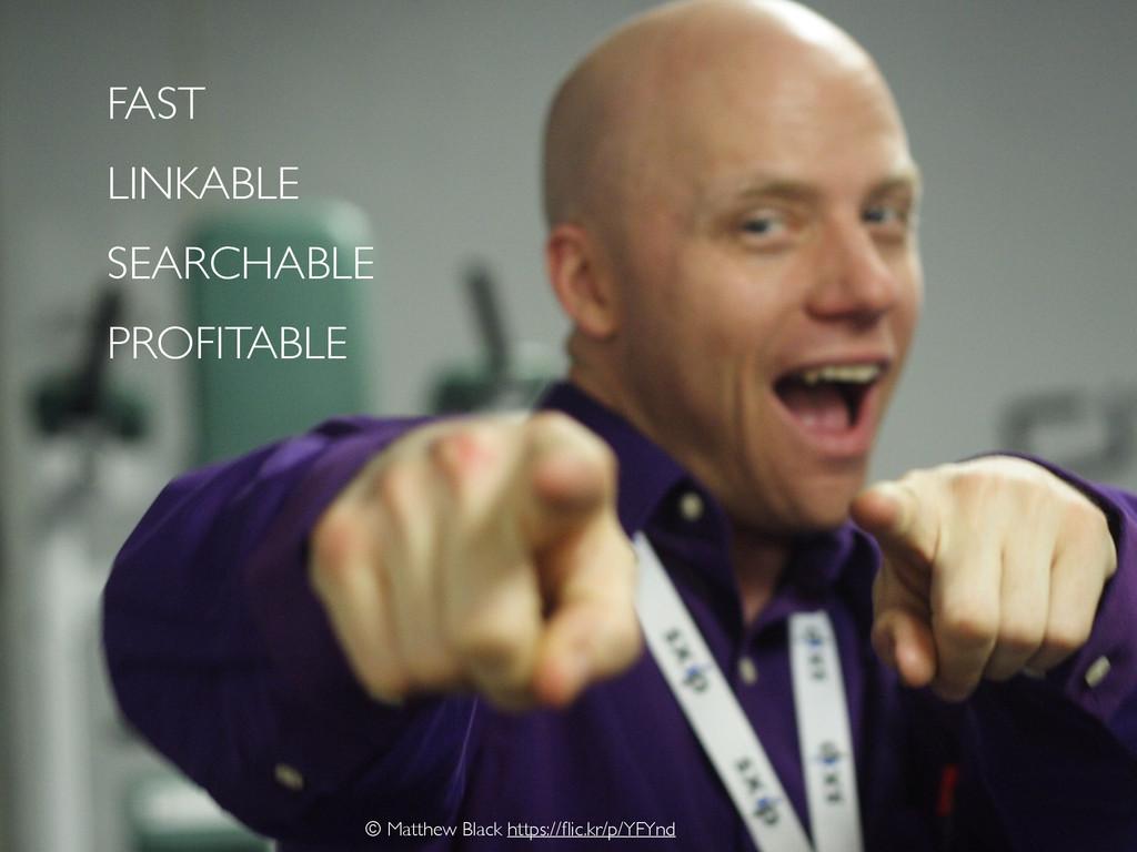 FAST LINKABLE SEARCHABLE PROFITABLE © Matthew B...