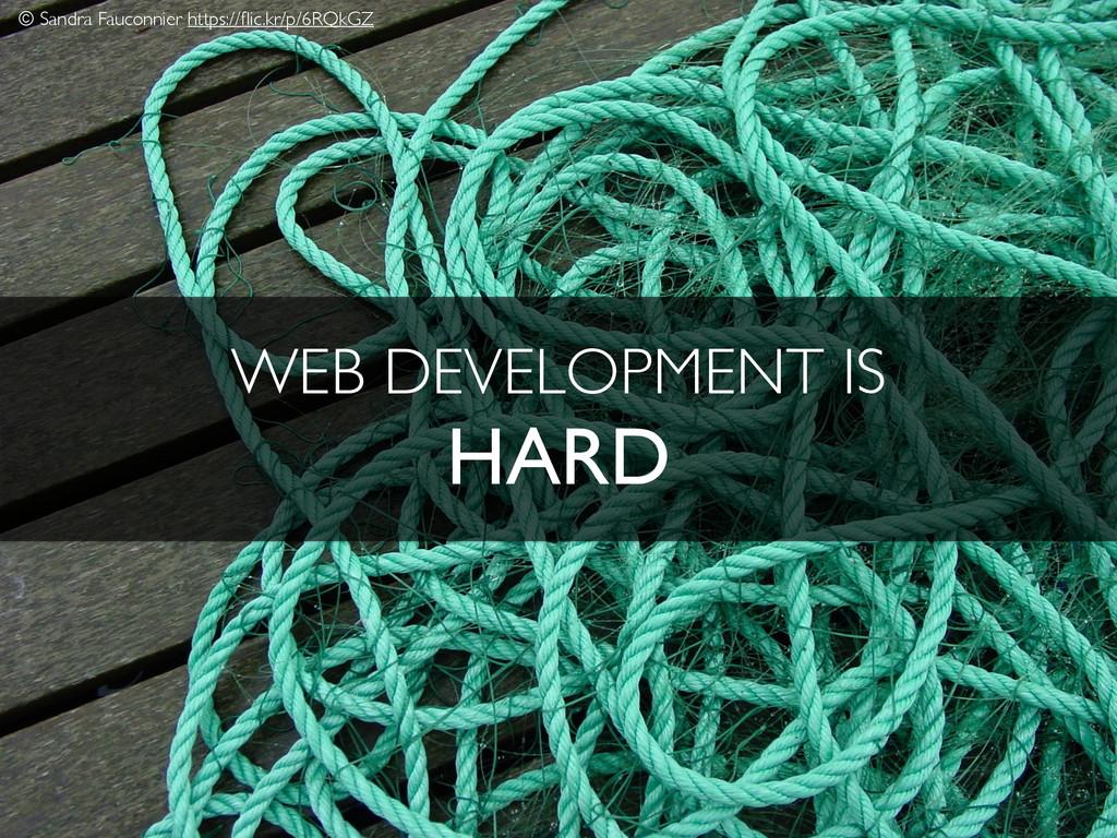 WEB DEVELOPMENT IS HARD © Sandra Fauconnier htt...