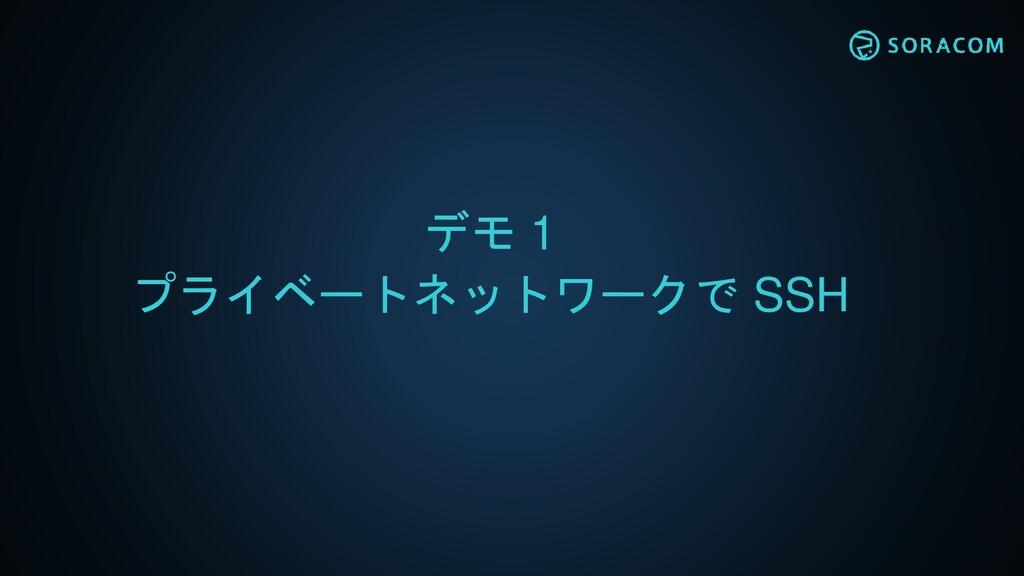 デモ 1 プライベートネットワークで SSH