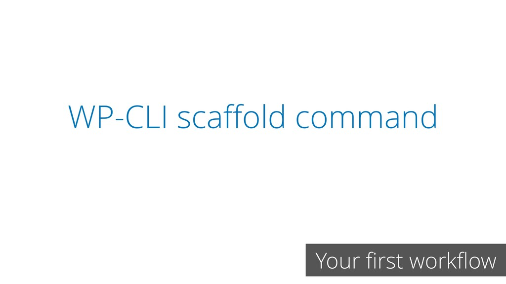 WP-CLI scaffold command Your first workflow