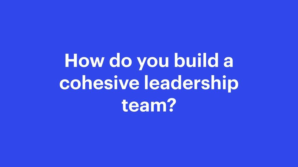 How do you build a cohesive leadership team?
