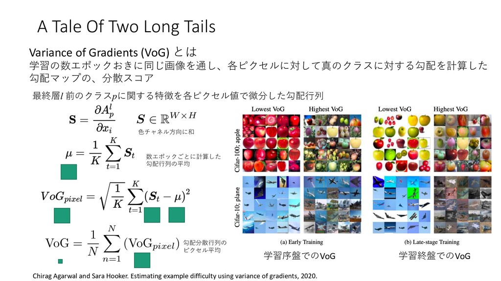 A Tale Of Two Long Tails Variance of Gradients ...