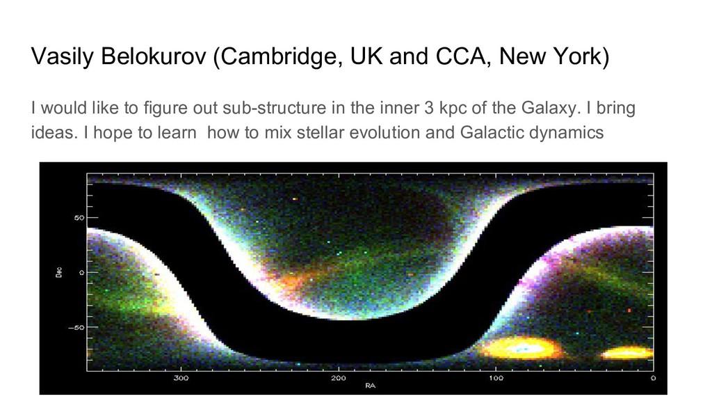 Vasily Belokurov (Cambridge, UK and CCA, New Yo...