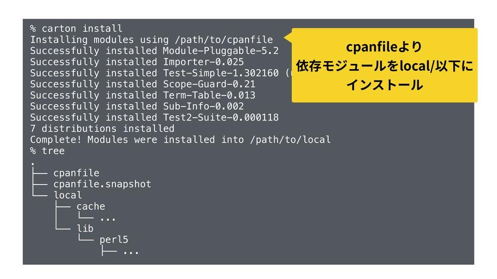 % carton install Installing modules using /path...
