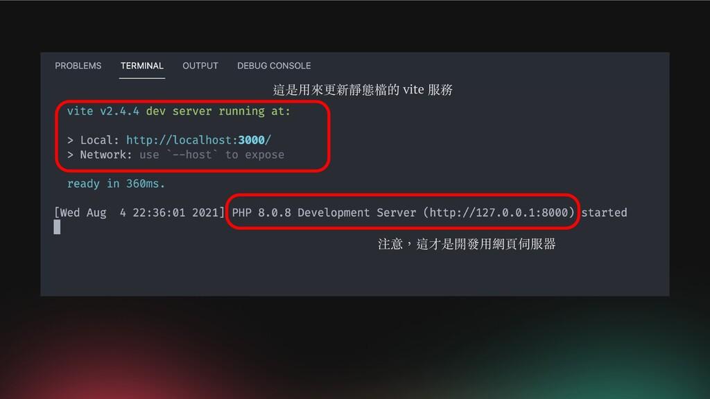這是用來更新靜態檔的 vite 服務 注意,這才是開發用網頁伺服器