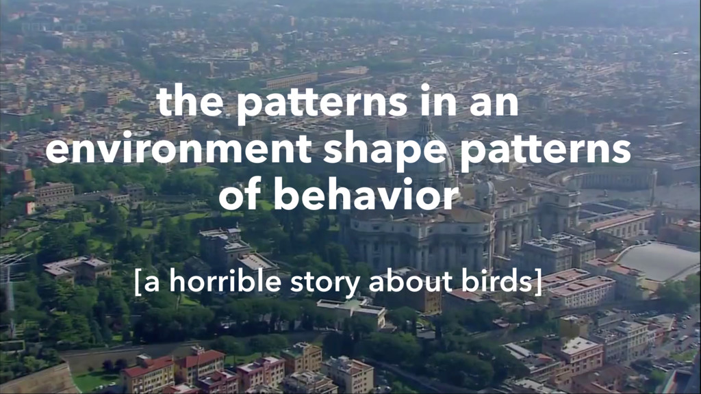 the patterns in an environment shape patterns o...